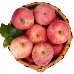 潘苹果 甘肃天水红富士苹果 12粒装 约70mm 总重约4斤 自营水果