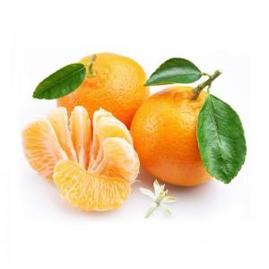 悠乐果 南非进口柑橘4斤16个左右 新鲜